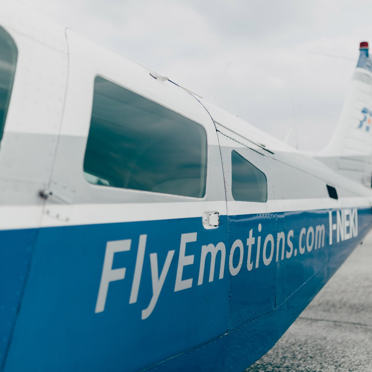FlyEmotions-004-small-min